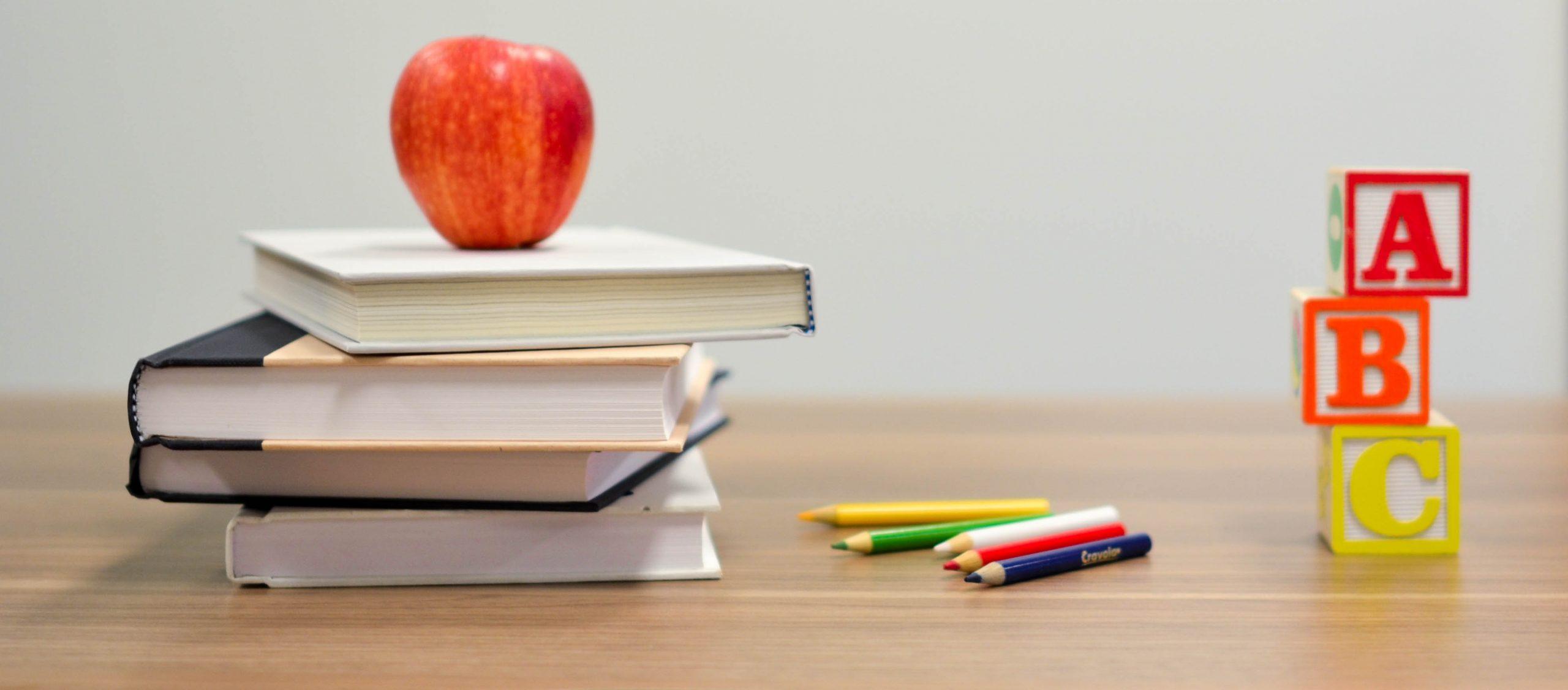 Enseignements Pratiques Interdisciplinaires (EPI) de décembre 2019 : photos et vidéos